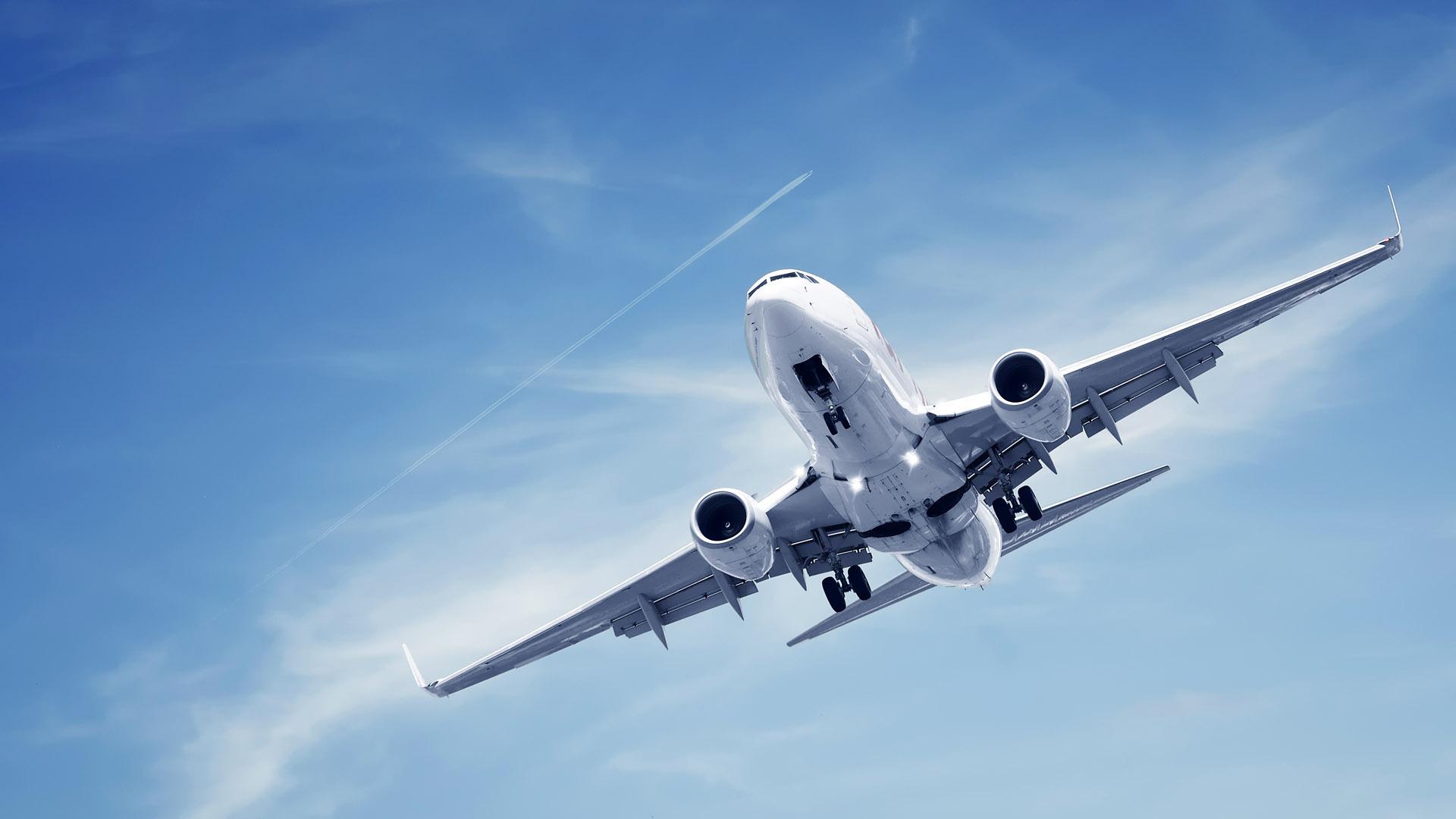 Fakta tentang Terbang Termasuk Bau Kentut