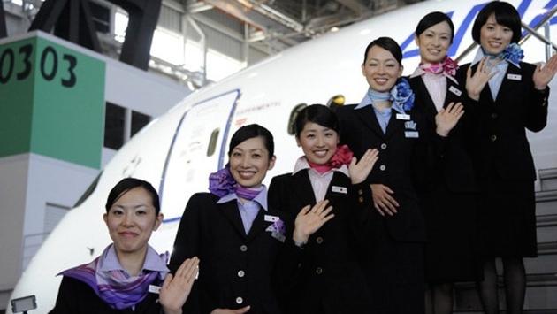 787 Dreamliner All Nippon Airways