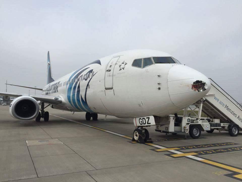 EgyptAir Tertunda Terbang Sehari di London akibat Dihantam Burung